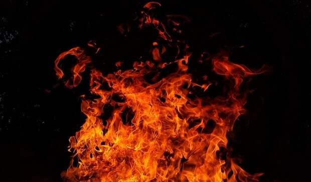 Пожар наОби ненесет последствий для природы