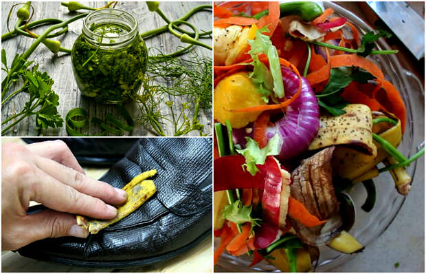 Полезные идеи использования пищевых отходов.