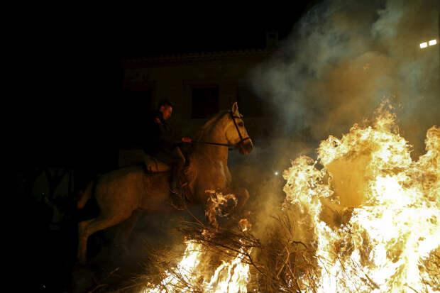 Огонь и лошади: День святого Антонио-2016