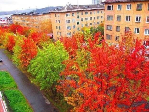 Осенняя пора....очей очарование...
