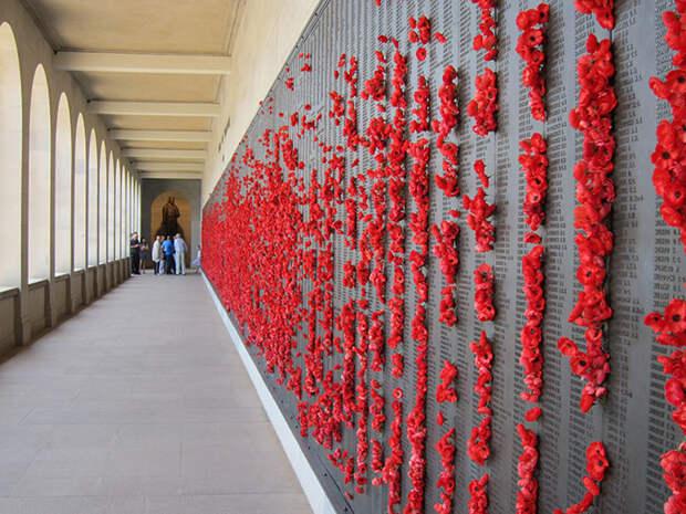 В Австралии вандал воровал цветы с могилы неизвестного солдата…