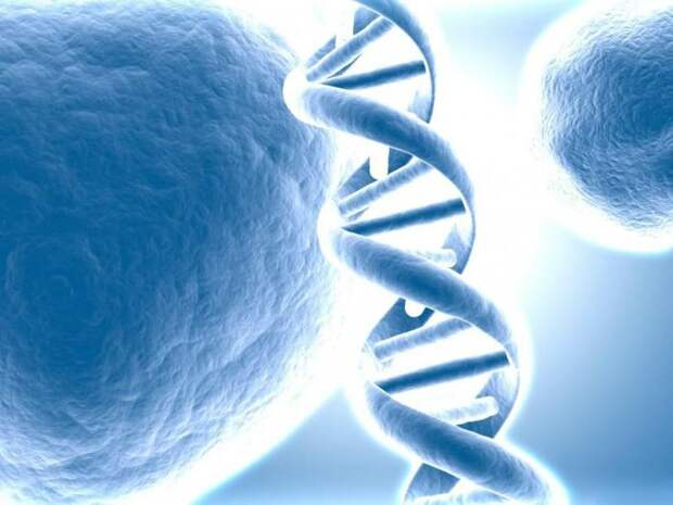 Ученые нашли инопланетный код в ДНК человека. Но... кто создал древних инженеров генетиков?