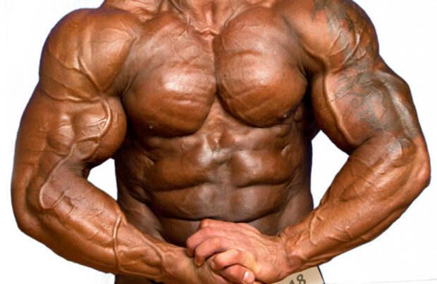 Большие мускулы — это плохо