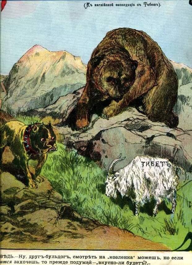 1904 Россия медведь, россия