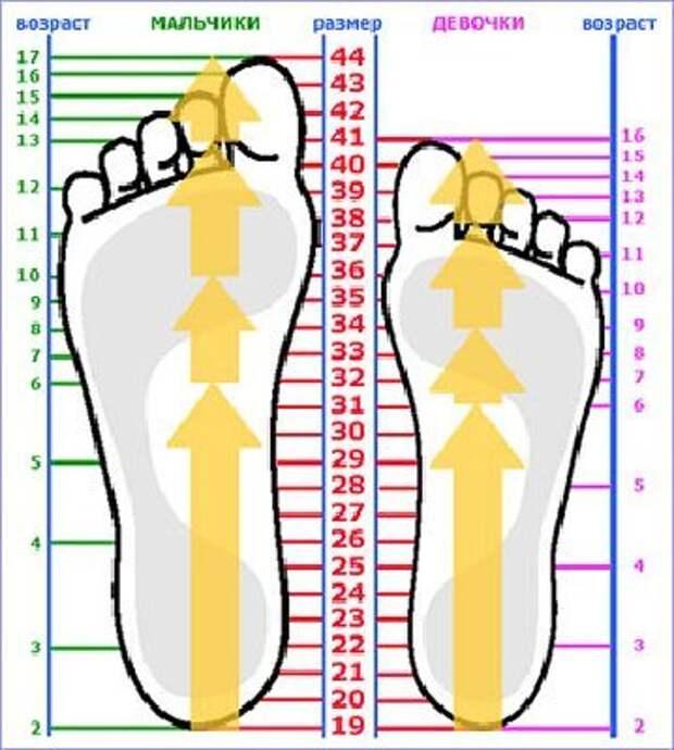 http://razmery.zakaztovarov.net/images/stories/90__359x400_razmery-obuvi-1.jpg