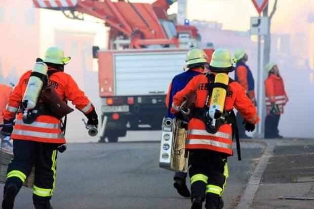 Пожарные потушили горящий мусор в Беговом