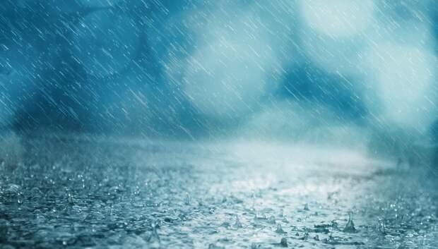 МЧС предупредило жителей Подмосковья о сильном дожде, грозах и порывистом ветре