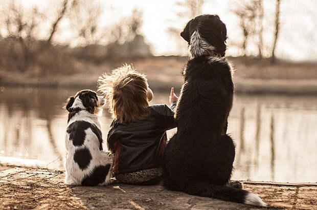 То, что вы полюбили в детстве, навсегда останется в вашем сердце дети, животные, фотография