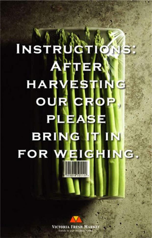 """Надпись на принте: """"После сбора нашего урожая, пожалуйста, отнесите его на весы"""""""