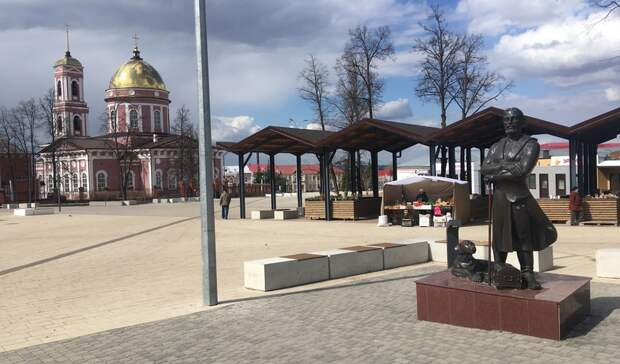 Город трех «С»: как жители Бирска ладят сбродячими собаками ипочему это неудивляет