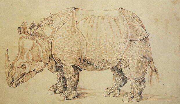 Десять странных историй про животных и военных военные, война, животные, истории из жизни, история, факты