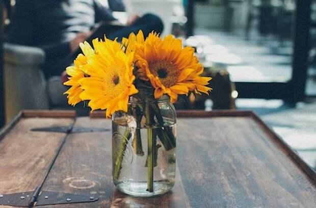 9. Продление жизни цветов Аспирин, применение