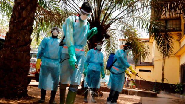 Эпидемия Эболы началась в Гвинее