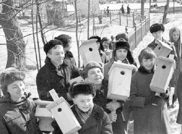 А еще делали скворечники. СССР, история, школа