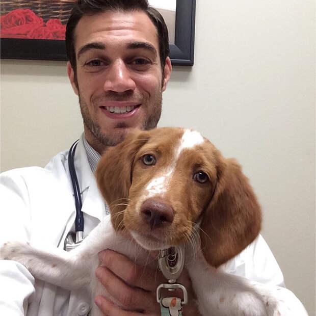 44.  ветеринар, красавец, мужчина