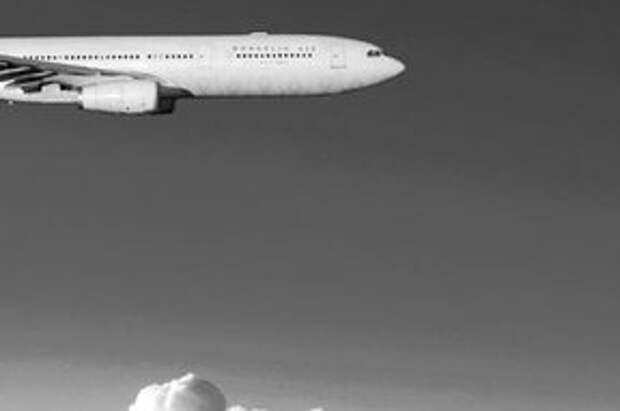 Авиакатастрофа в Египте, материалы по теме