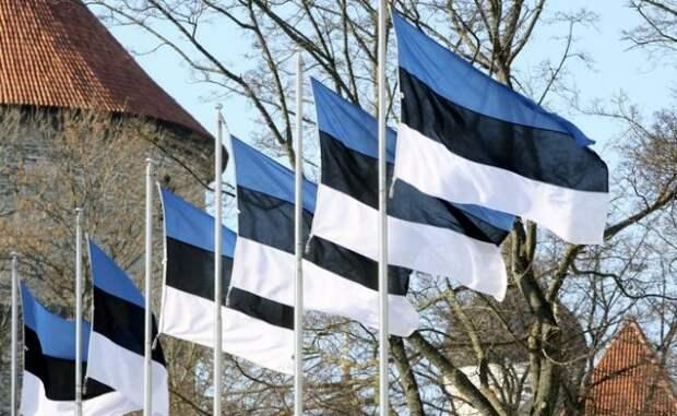 ВЭстонии договорились осоздании нового правительства страны