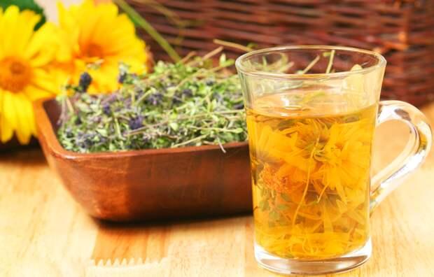 Онкологические и лучевые заболевания - лечение травами