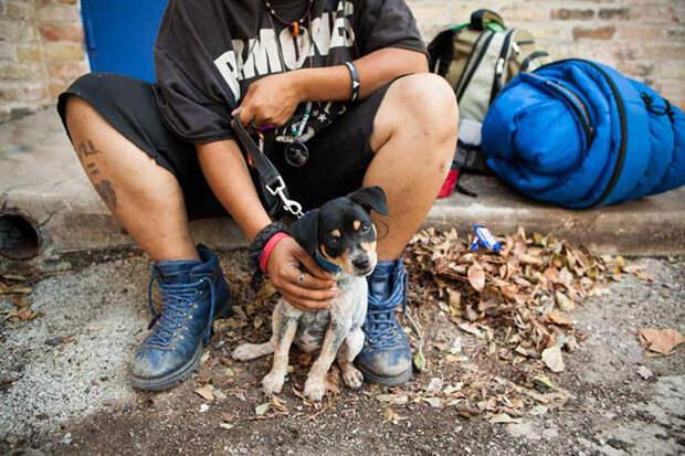 23. Бездомный и его маленький щенок бездомный, любовь, собака