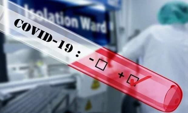 За всё время пандемии в Поморье официально зарегистрировано 71 349 случаев заражения COVID-19