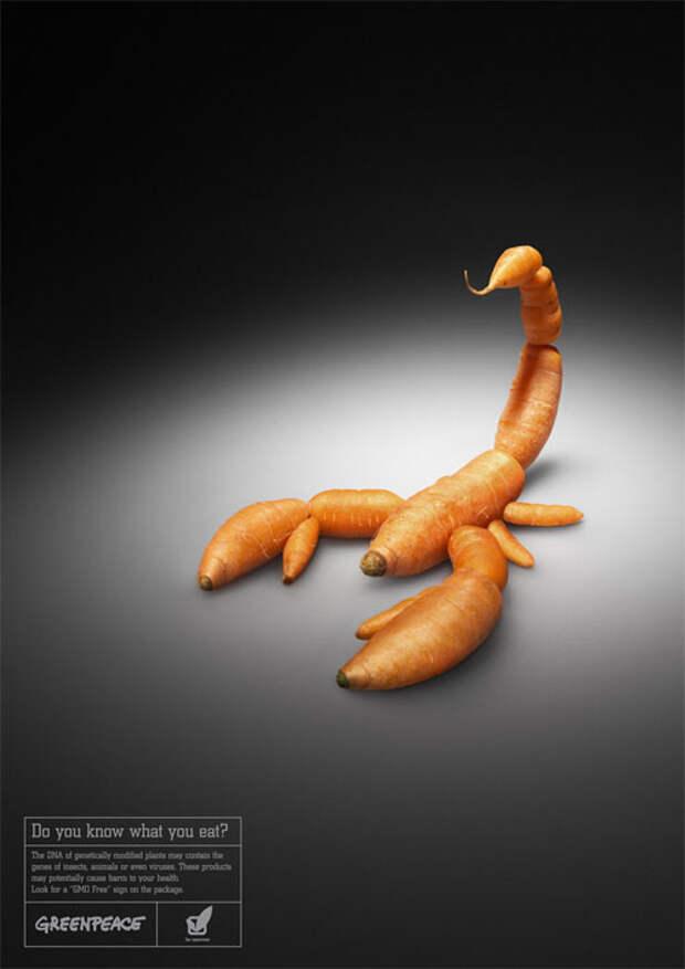 Greenpeace: вы уверены, что морковки не кусаются?