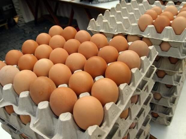 Диетолог рассказал, как часто можно есть яйца