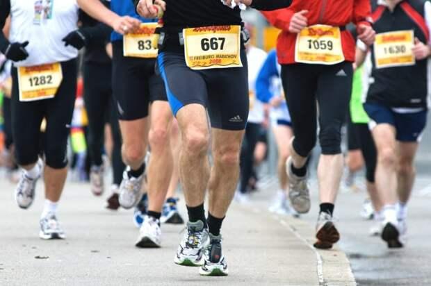 На Московский марафон с «Активным гражданином»