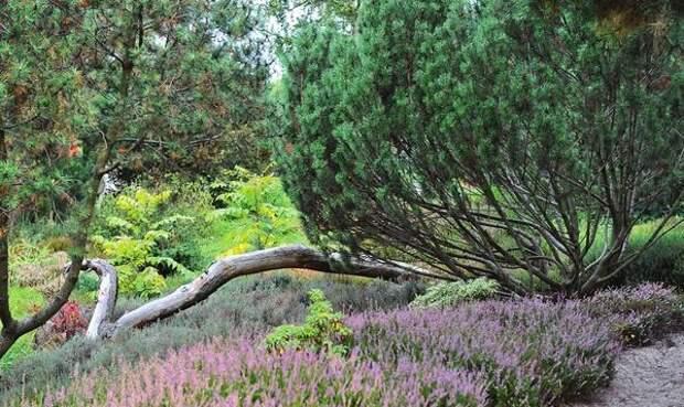 Растущие рядом деревья можно тоже включить в композицию, например прислонить или подвесить какую-нибудь корягу к дереву, не забывая, что веревки должны быть крепкими, а коряга - не слишком тяжелой.