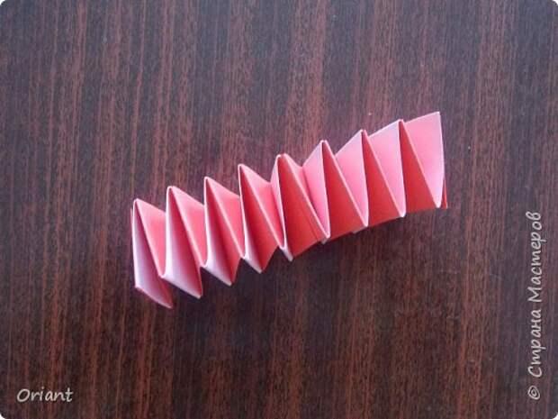 Мастер-класс Педагогический опыт Раннее развитие Бумагопластика Волшебные превращения бумажной ленточки Бумага фото 7