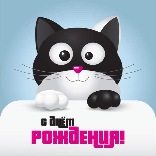 Прикольная открытка с днем рождения с котом