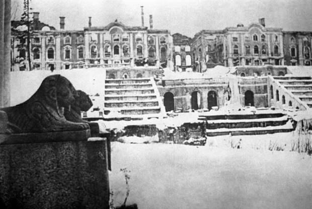 ID: 10624584 Описание: Советский Союз. Ленинградская область. Вид на разрушенный Большой Петергофский дворец в 1944 году. Фотохроника ТАСС