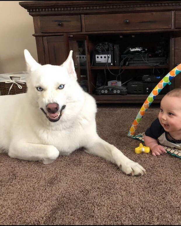 Детки- наше всё