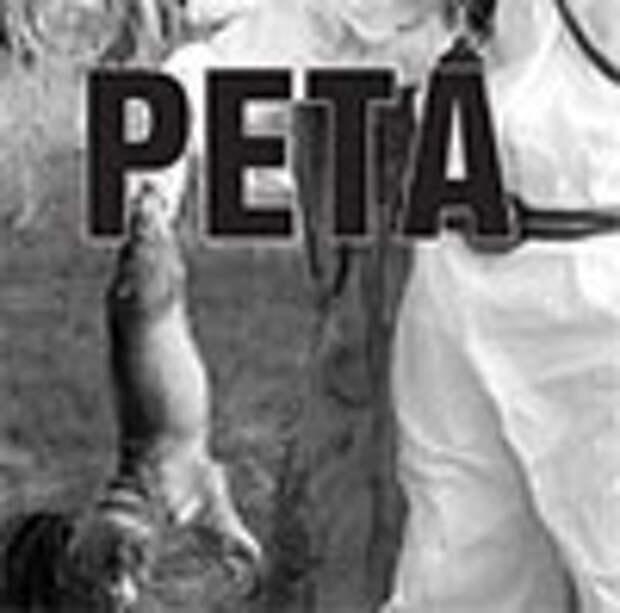 PETA вновь обвинили в лицемерии
