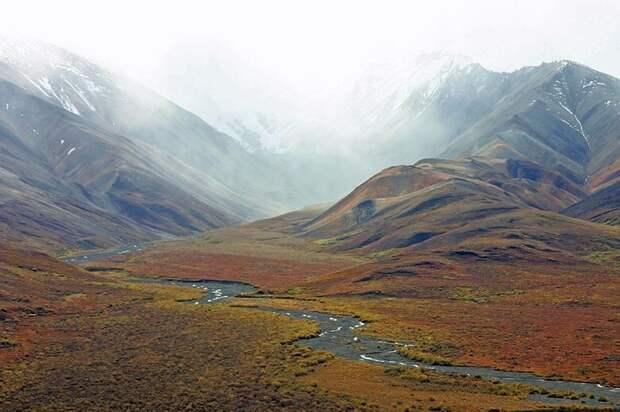 Тундра на Аляске