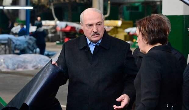 Запад по большому счету отказался от борьбы с режимом Лукашенко – эксперт Мошес