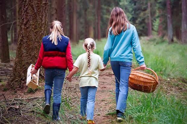 мама с двумя дочерьми идут в лес за грибами