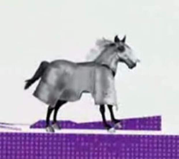 McDonald's выдает зарплату в железных конях!