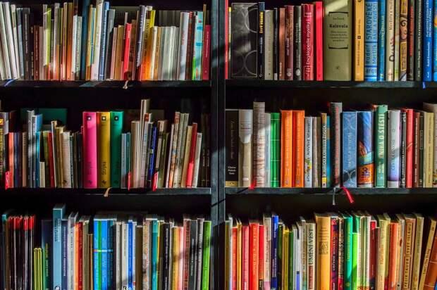Жители Ижевска могут поучаствовать в книгообмене