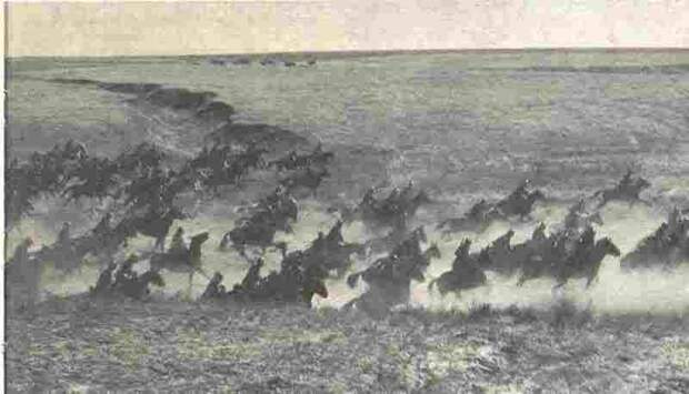 Атака полка «Савойя Кавалерия»