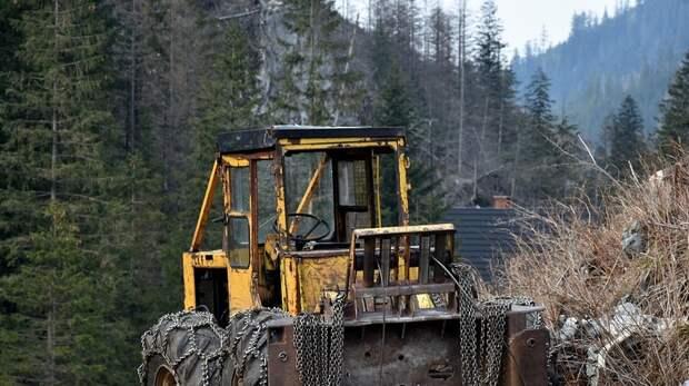 В Тюмени раздавили тракторами санкционные продукты из Европы
