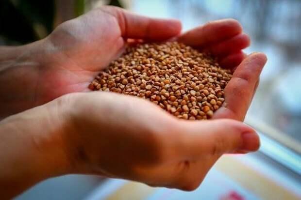 Представитель агробизнеса прогнозирует рост цен на гречку