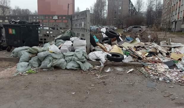 «Что творите?»: петрозаводчане возмутились свалками мусора вгороде