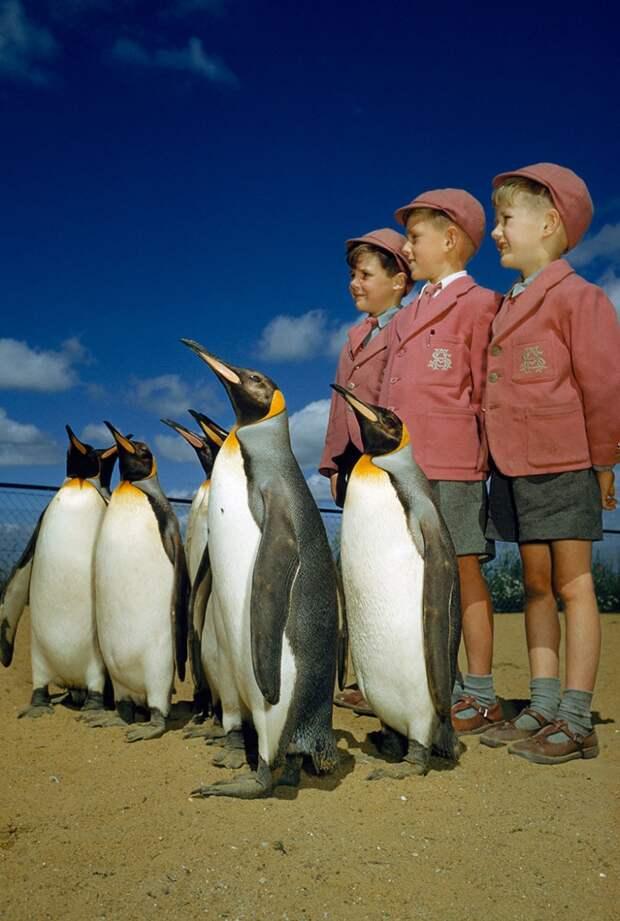 25 неопубликованных фотографий из архивов National Geographic