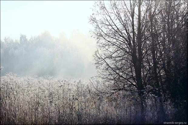 Осень в белом