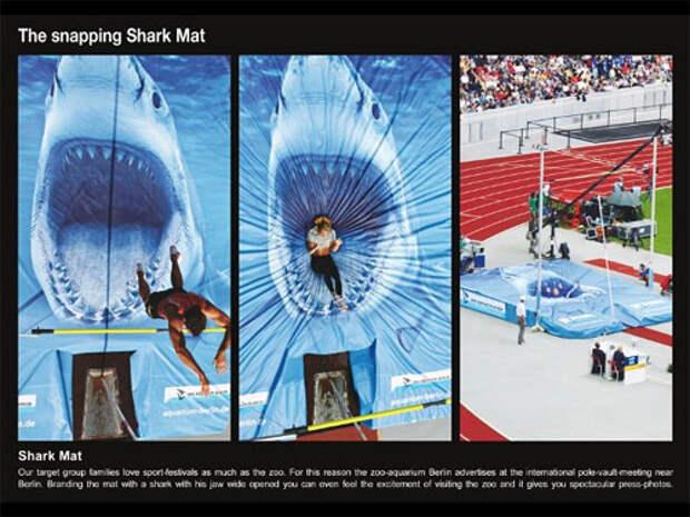 Прыжки с шестом в пасть акулы