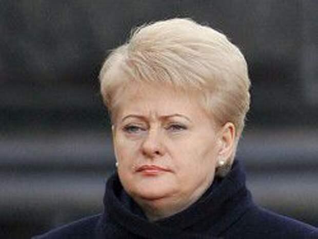 Новость на Newsland: Литва может ввести санкции в отношении граждан РФ