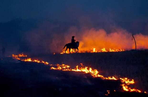 Ковбой Джош Хой следит за ежегодным сжиганием старой травы в прерии в заказнике Флинт Хилс, штат Канзас. (© Linda Misenheimer/National Geographic Traveler Photo Contest)