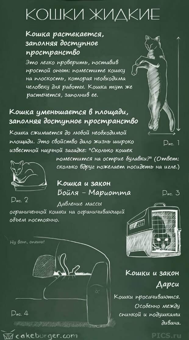 Физика кошек: невероятно смешной справочник-комикс