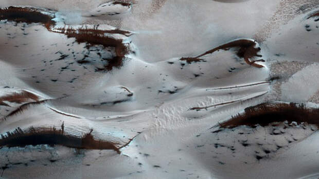 В NASA опубликовали фотографии лесов на Марсе