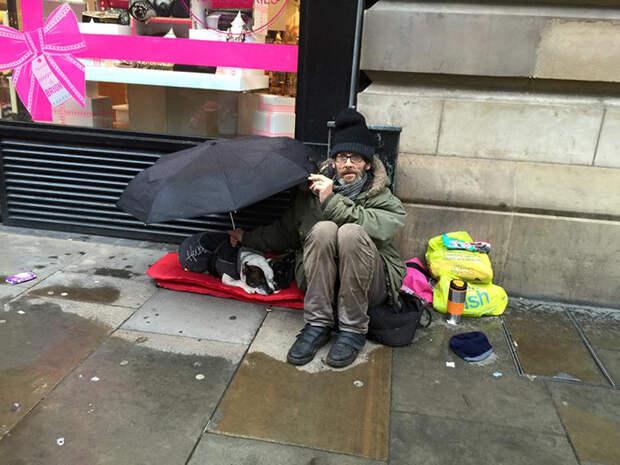 6. Защищает питомца от дождя  бездомный, любовь, собака